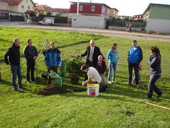 Kindergarten Baumpflanzung