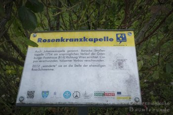 Neue Linde für Ebreichsdorf